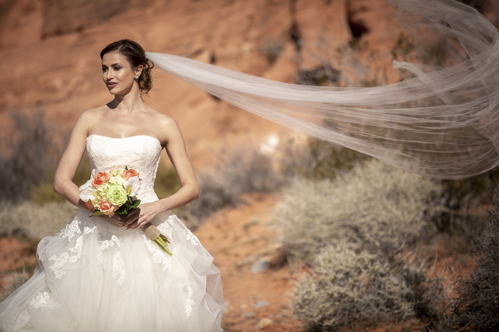 Valley of Fire Wedding Photography - Amanda (9 of 10).jpg