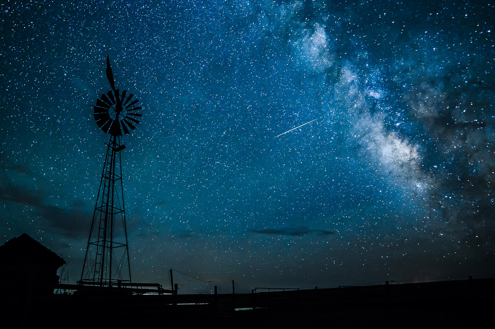 Cow Fan With Milky Way