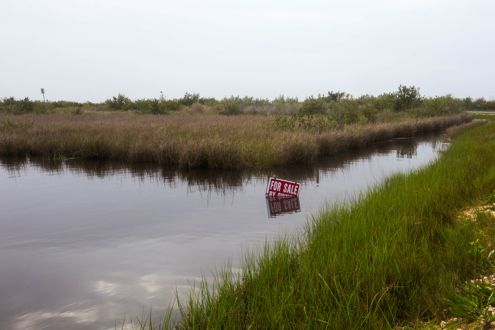 Wetlands for sale, Grand Isle, La