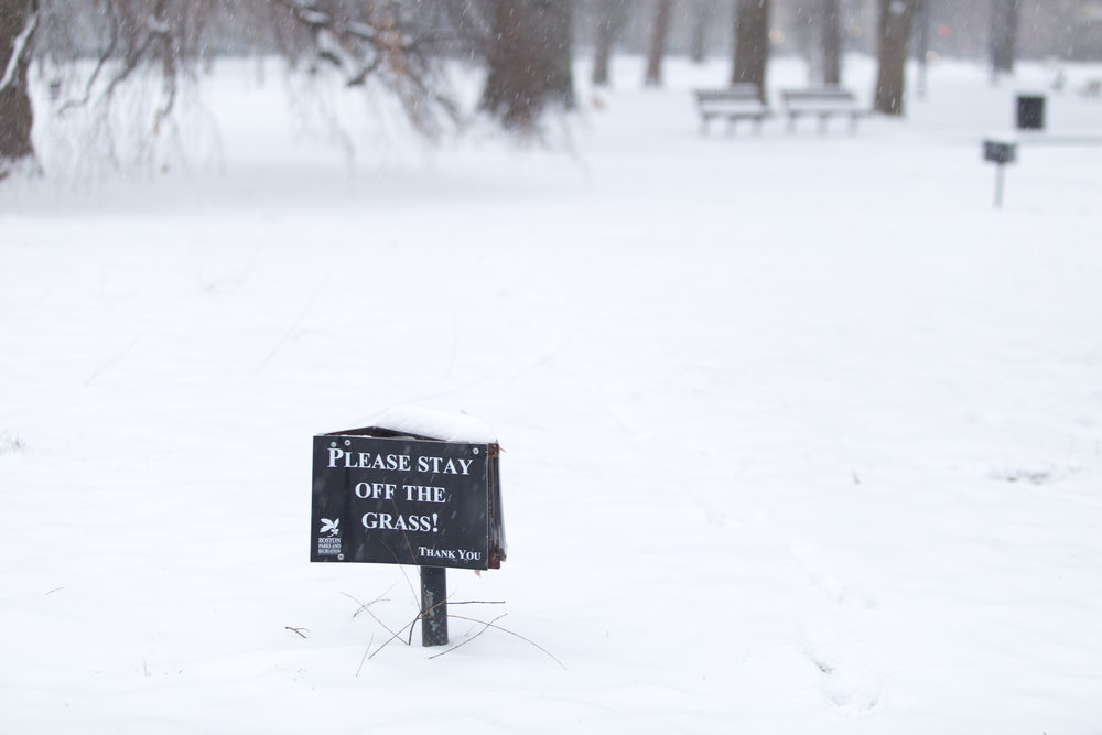 A sign warns visitors of the Boston Common to stay off of the grass, which was covered by a thick blanket of sno on Dec. 17, 2016.
