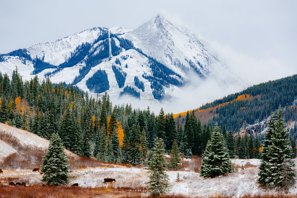 Majestic Mt. Crested Butte - Crested Butte, CO - Prints Available