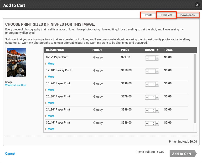 Photoshelter's mess of a buying menu. The tabs at the top is how you navigate to other prints or licensing.