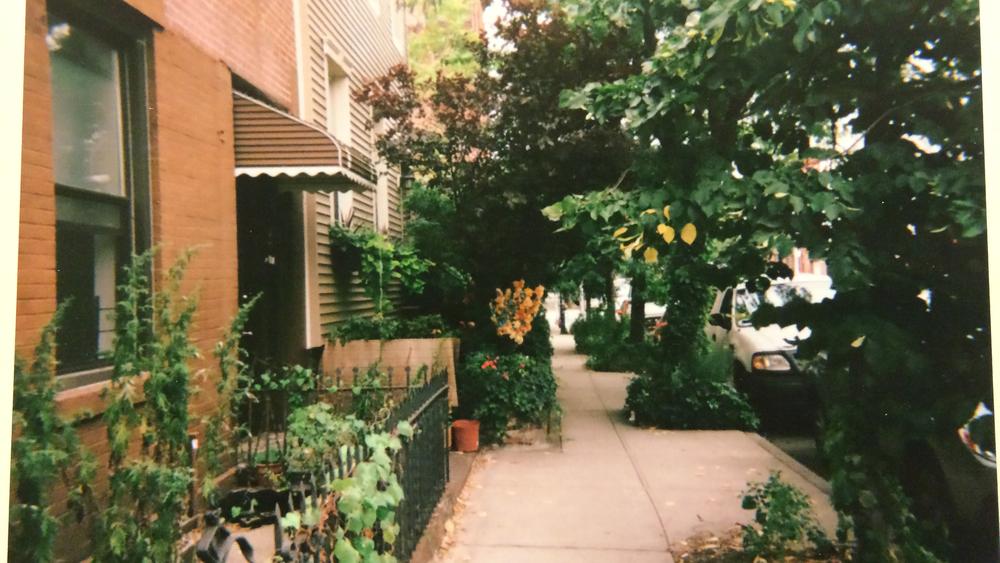 brooklyn block.jpg