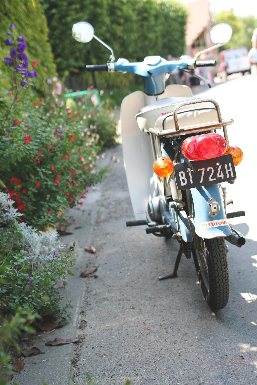 travel12 (1 of 1).jpg