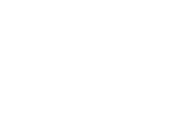 Your Big Year