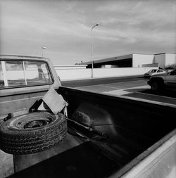 Images Found: Lee Friedlander