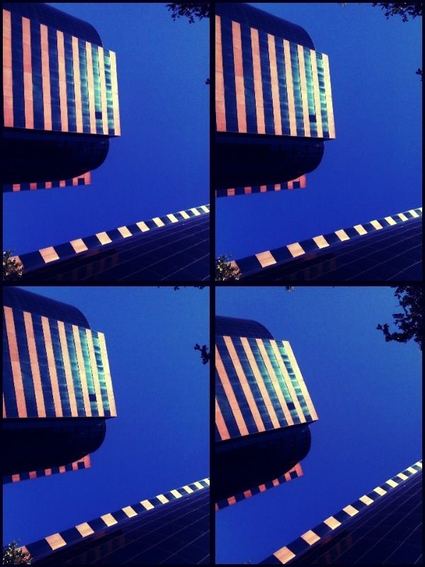 _ #lookup #mobile #photograpy