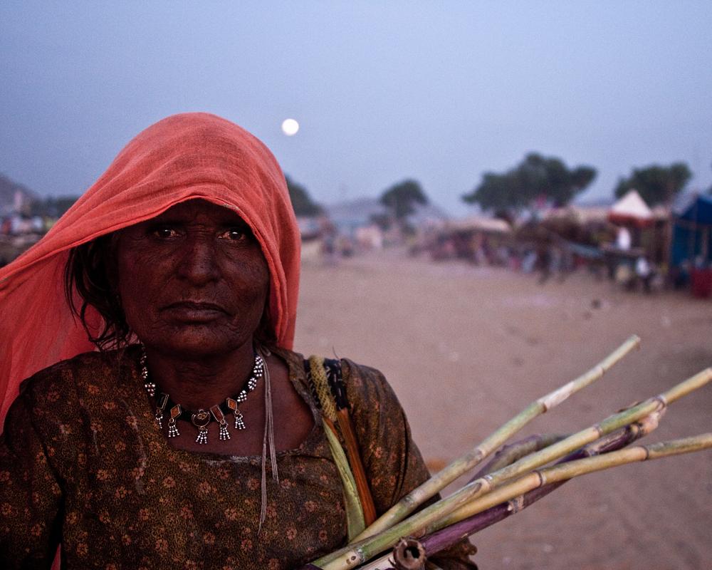 home… closing moments from the Pushkar Camel Mela, India, 2009