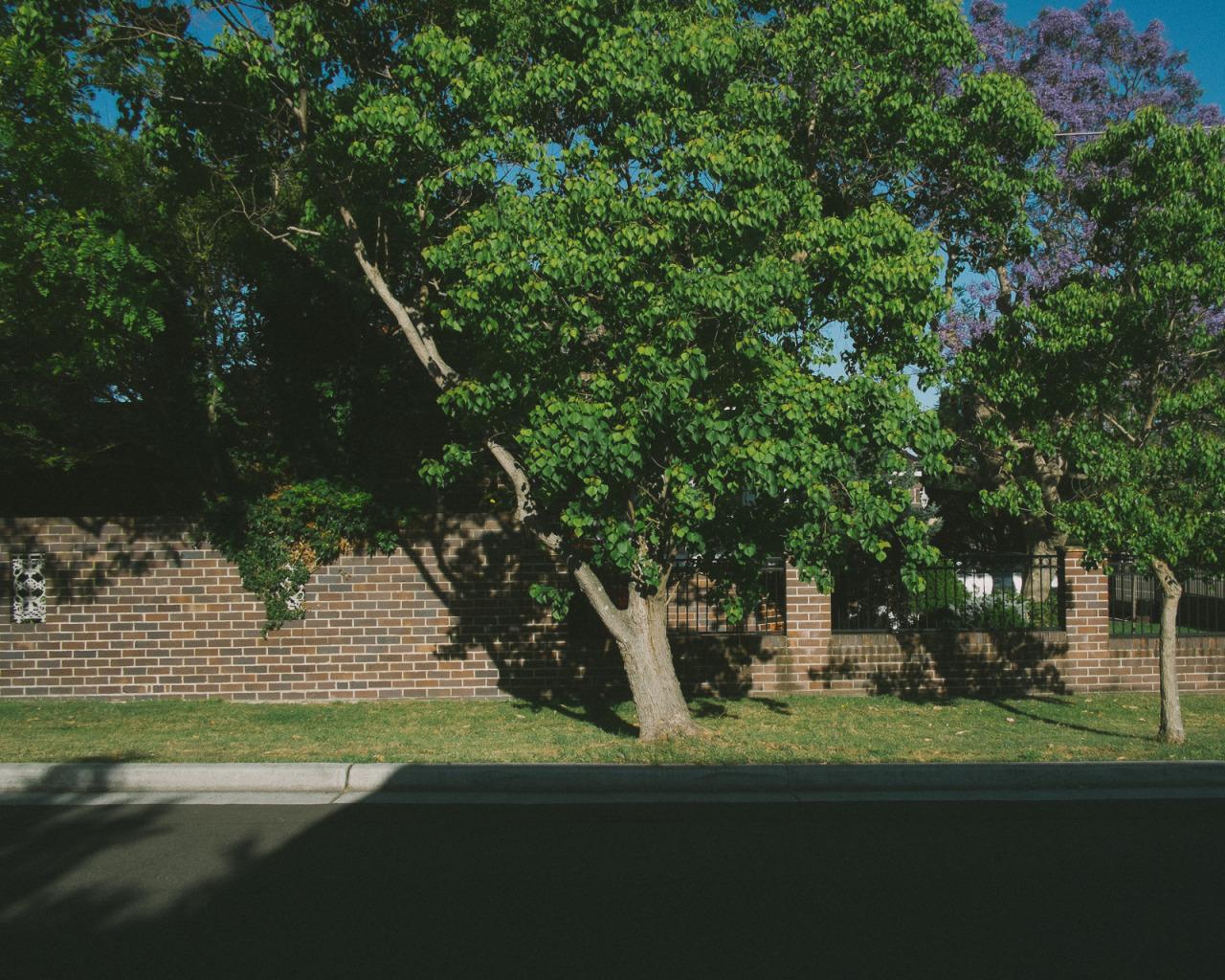 #suburbia #sansSouci #documentingspace