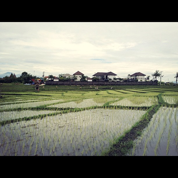 #indonesia #bali #kerobokan (Taken with  instagram )