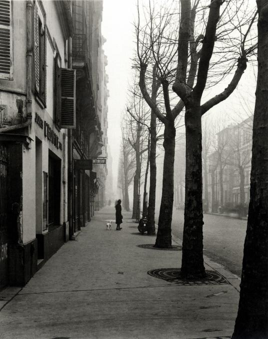 undr :      Louis Stettner     Avenue de Chatillon, 14th Arrond., Paris, ca. 1949