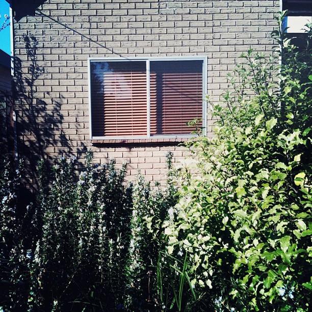 #suburbia #coburg  (Taken with  instagram )