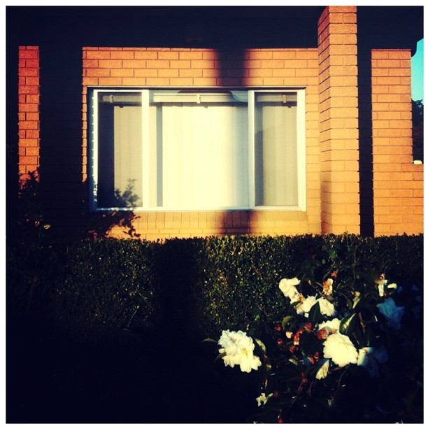 #suburbia #streetphotography #Sydney  (Taken with  instagram )