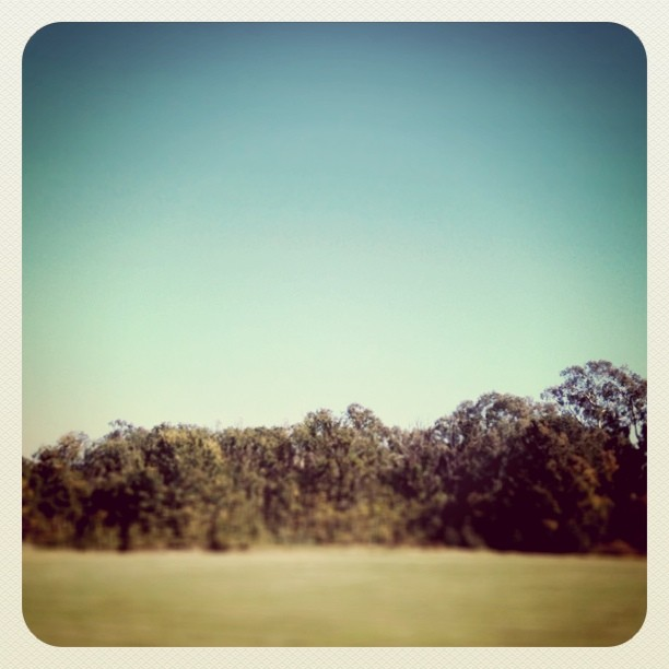 #roadtrip  (Taken with  instagram )
