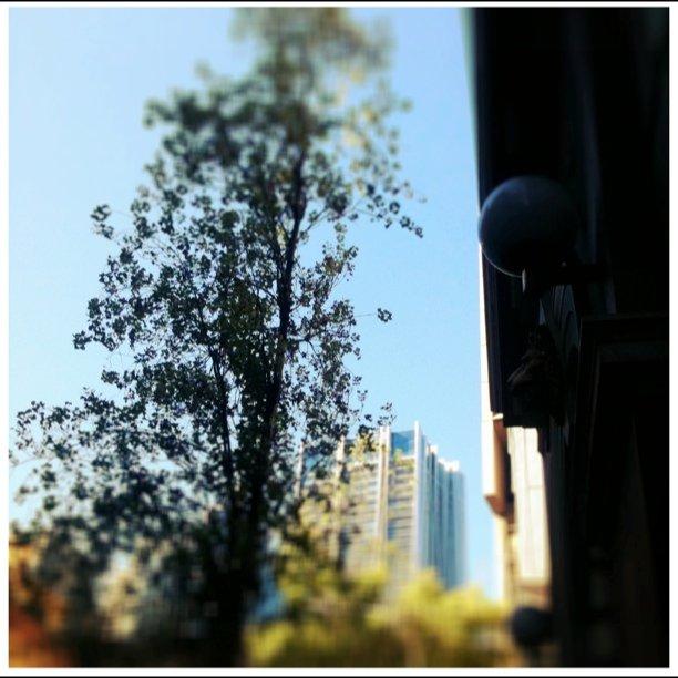 #sydneymorningphoto #lookup (Taken with  Instagram  at Klink Handmade Coffee)