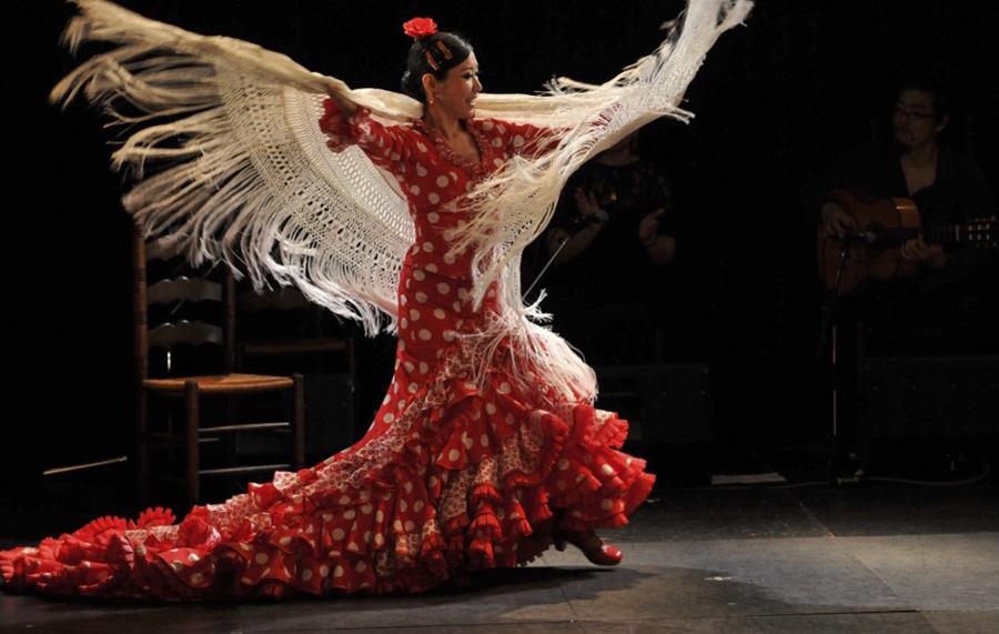 flamenco_05.jpg