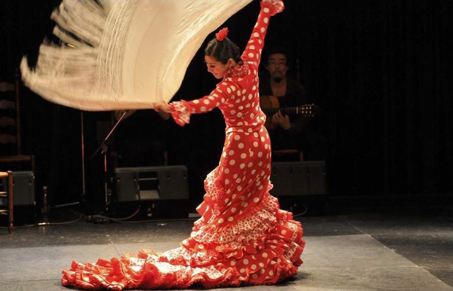 flamenco_04.jpg