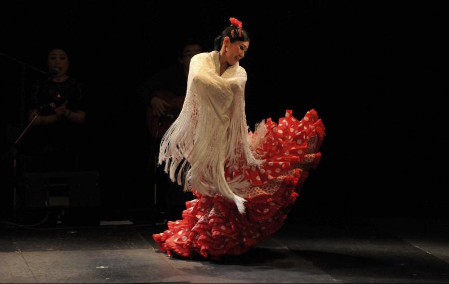 flamenco_06.jpg