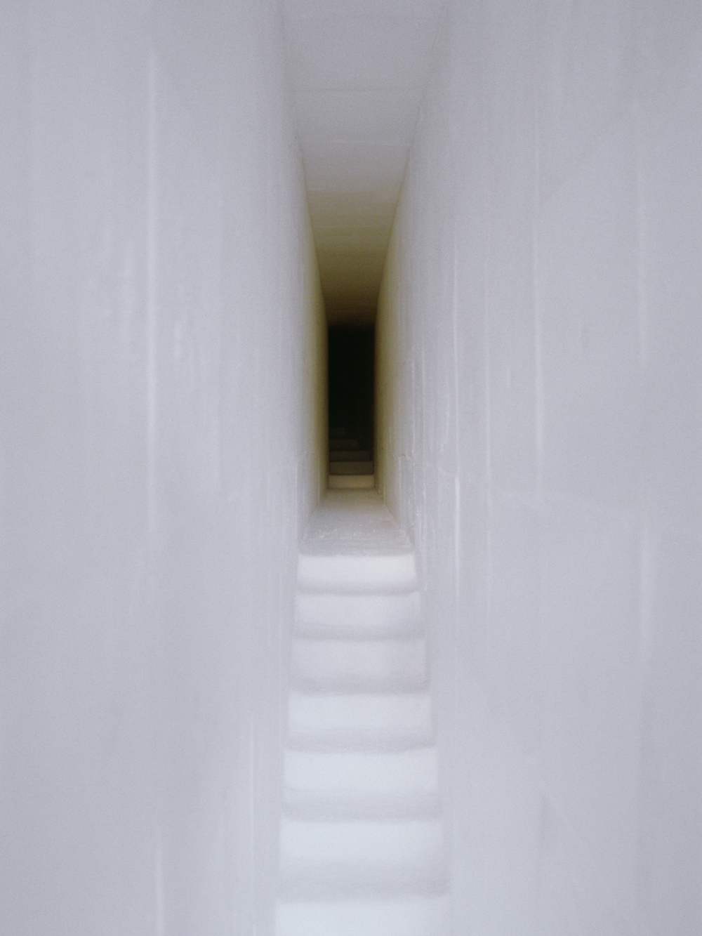 A Corridor to Remembrance, 1998