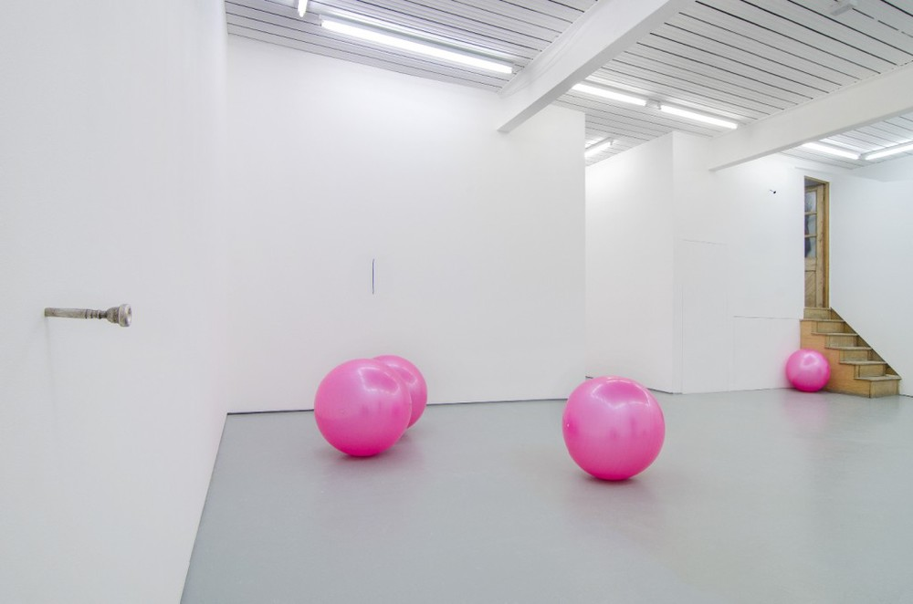 6 pink gym balls liberated from a lifetime of physical abuse, 2014