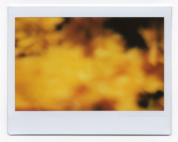 ryan-macfarland-03.jpg