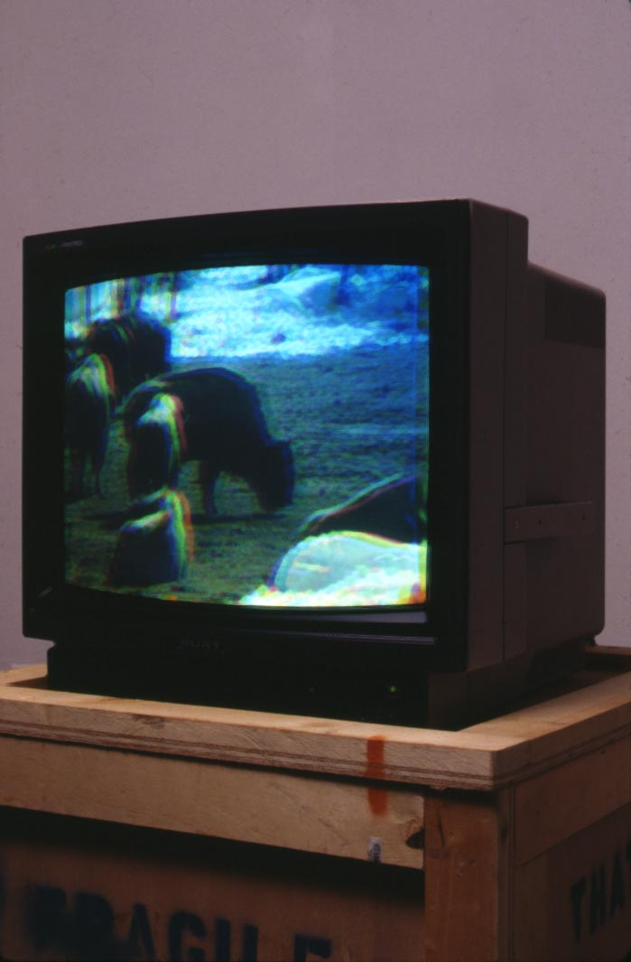 002b Bison Prototype, Monitor Version 1994.jpg