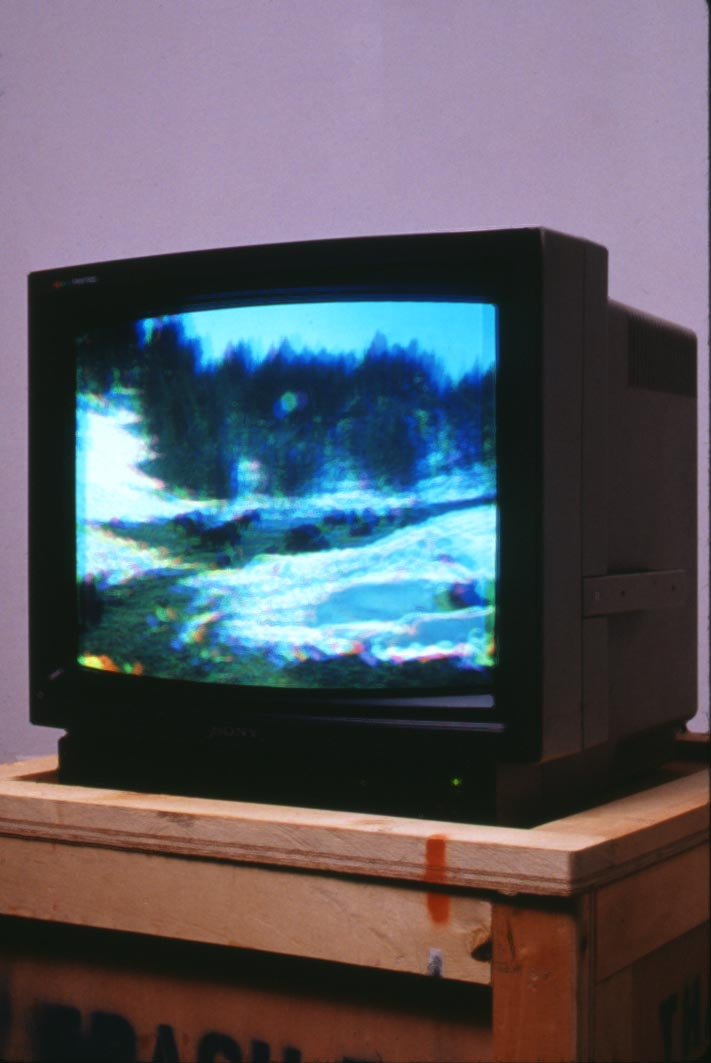002a Bison Prototype, Monitor Version 1994_.jpg
