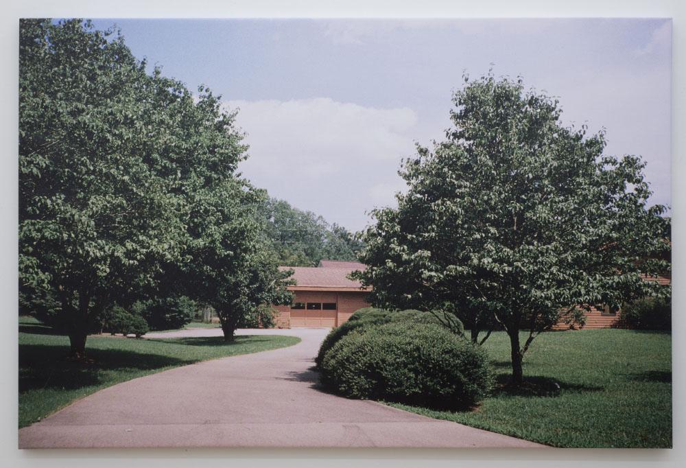 Campbell Lane, 2010