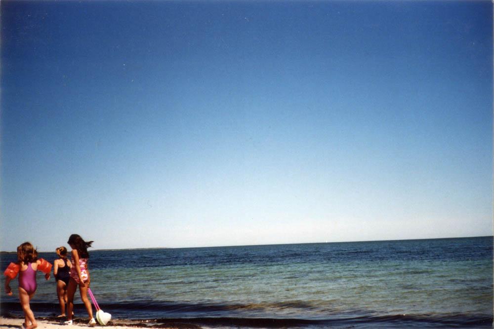 Beachstrollers, 2008