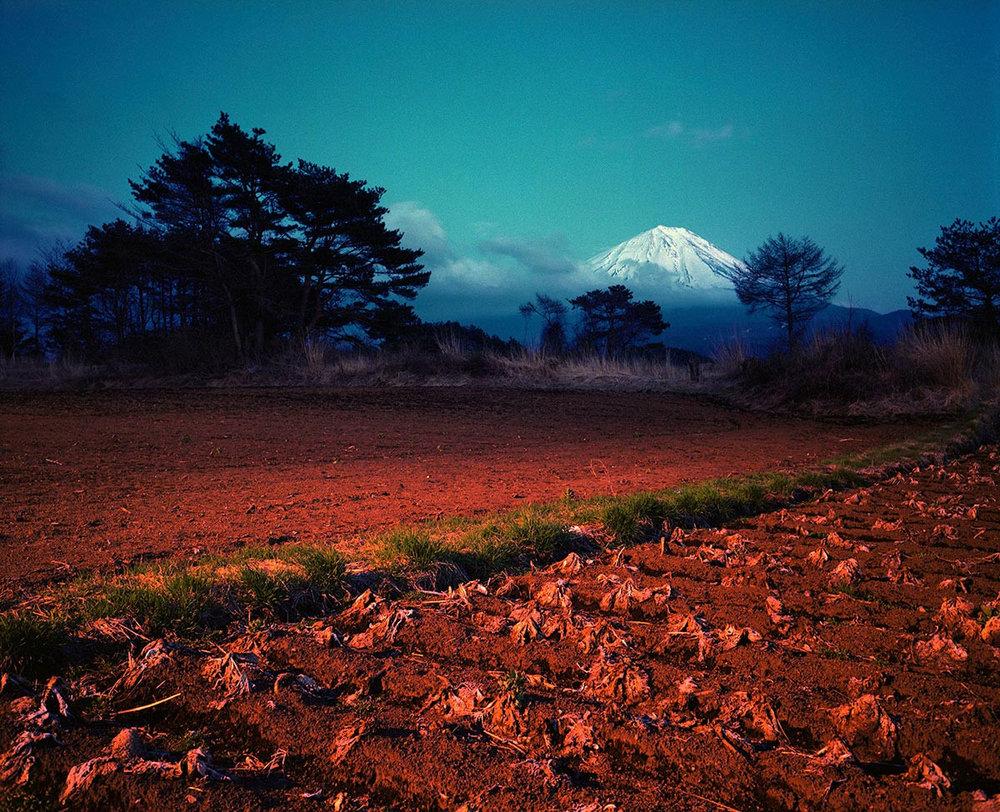 Japan, Yamanashi,Fields near Kawaguchiko, 2000