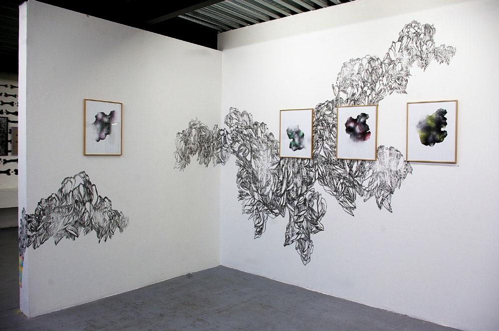 Les Hybrides, 2014-2016,drawing series ink on paper, colored pencil ,40x50 cm each.Wall Drawing sanded indian ink in-situ 2015 exhibition view, La Ligne Noire, Festival Graphéine, Lieu-Commun, Toulouse