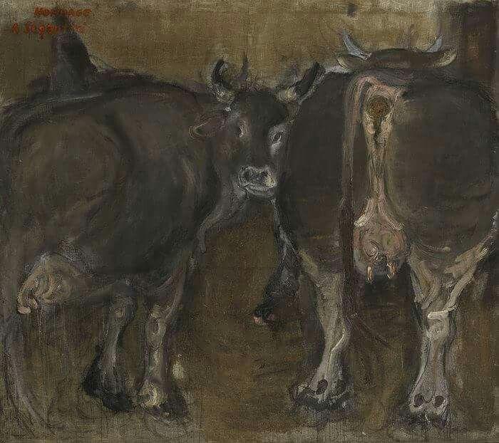 Mucche, 1974