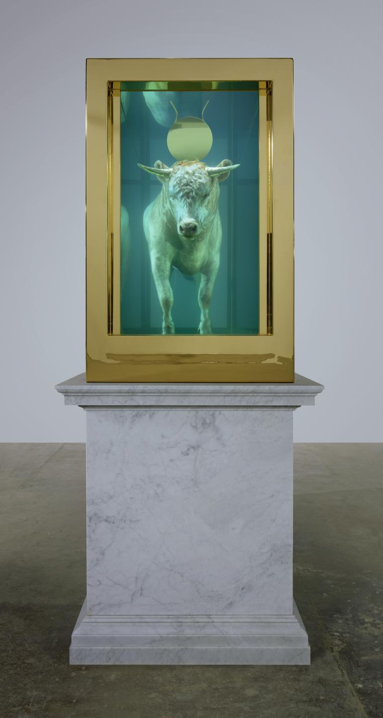 The Golden Calf, 2008