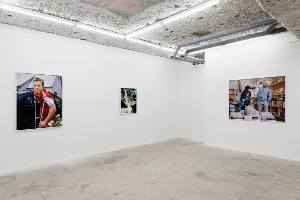Installation view, Louisa, Balice Hertling, Paris, 2016