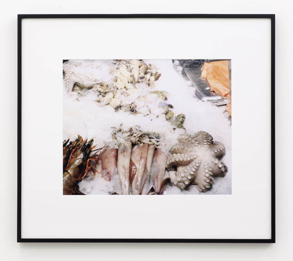 Ethical Culture, 2013, archival inkjet print, 62 x 79 cm