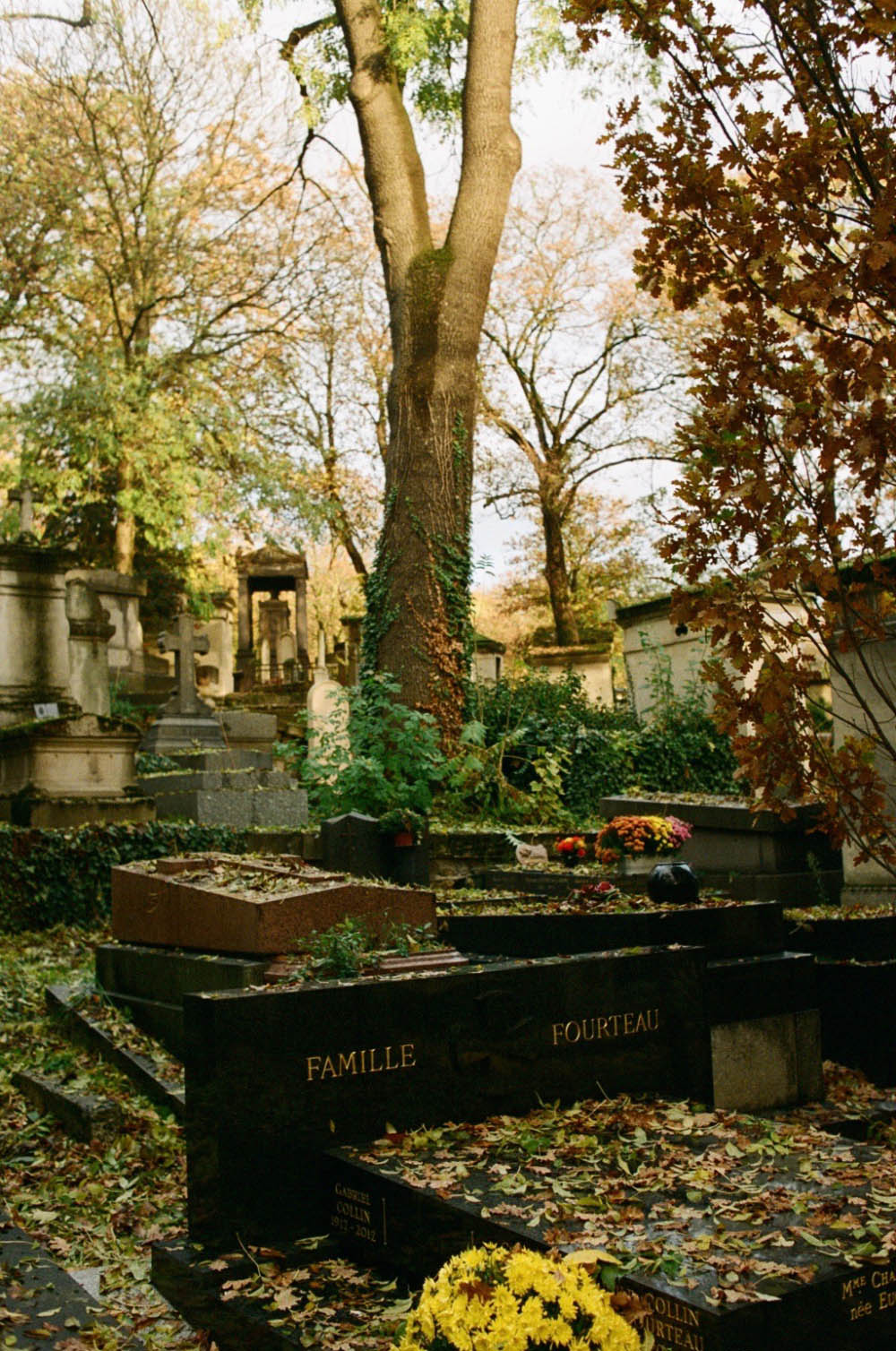 Père Lachaise Cemetery the day after the election, Paris, November 2016