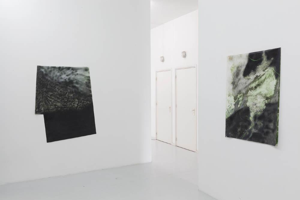 Green Infernos, 2017, installation view