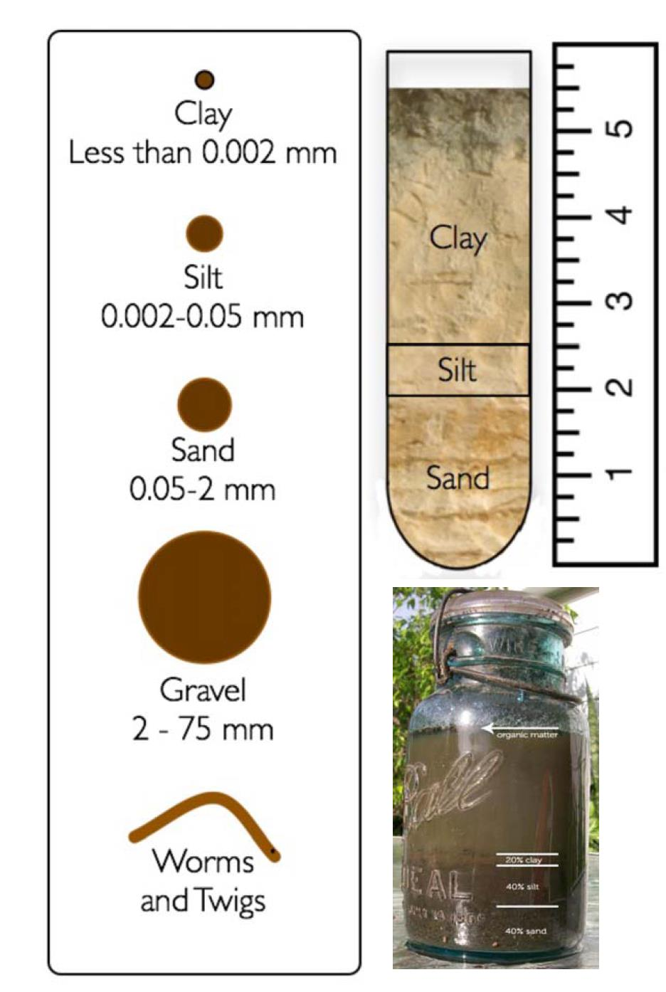 The ideal texture for crops is a Medium Loam, about 20% Clay, 40% Silt and 40% Sand as shown in the Mason (1 qt.) jar above.