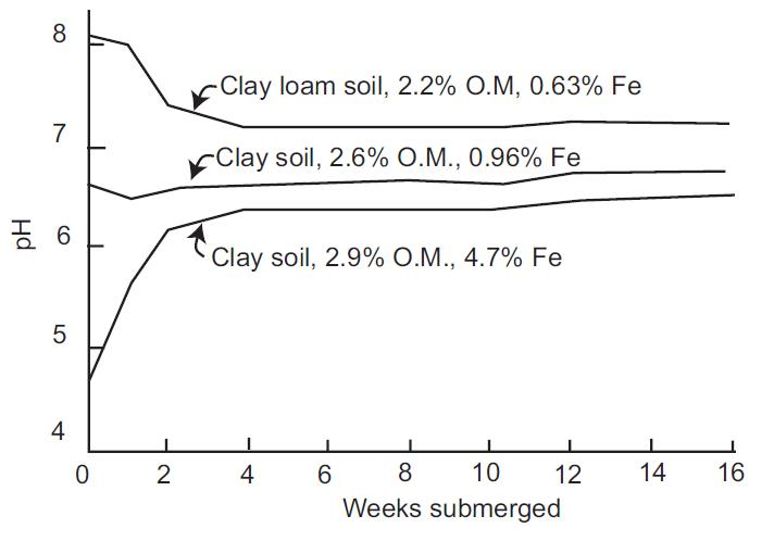 Snyder, C.S. and Slaton, N. 2002. Effects of Soil Flooding and Drying on Phosphorus Reactions