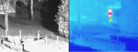 Sample of thermal image from Mobotix M15D video surveillance camera.