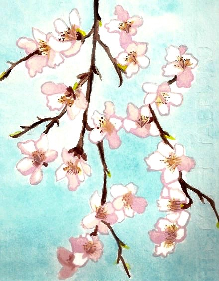 Cherry Blossoms Series 1                                                   Watercolor