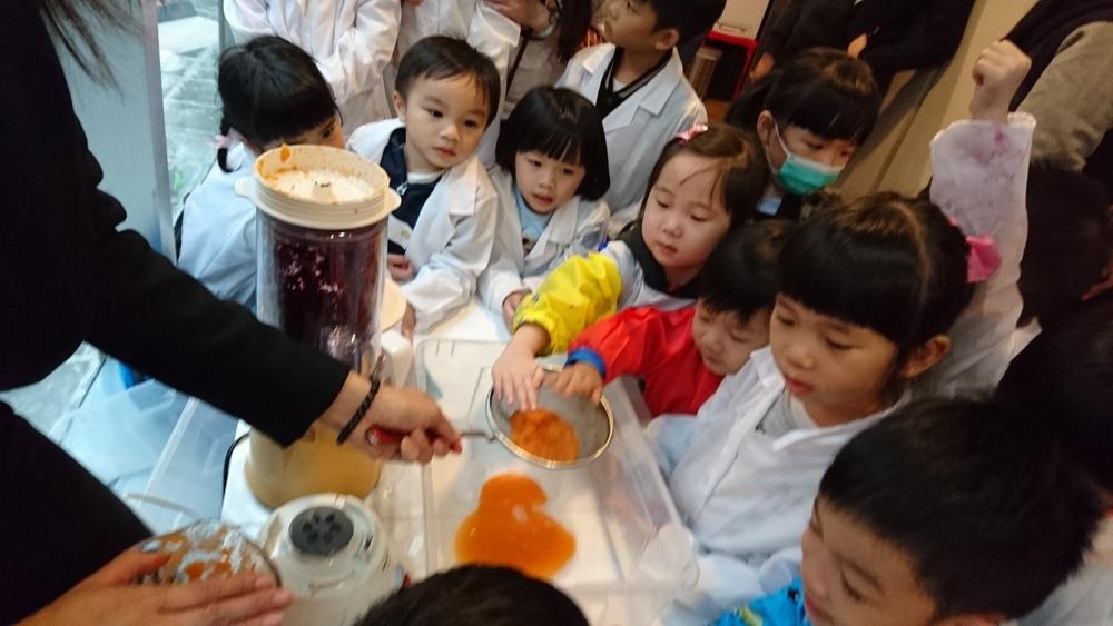 放入攪拌機中攪成顏色菜汁