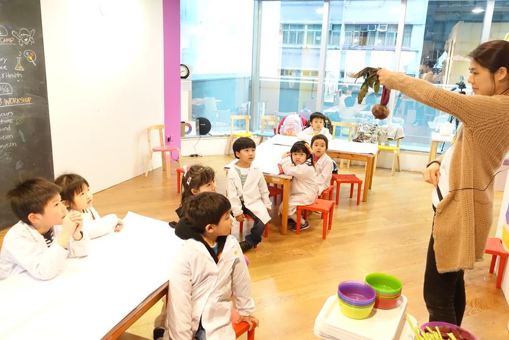 小朋友對Vicky 老師拿出來的紅菜頭大感好奇, 認為紅菜頭像薯仔?