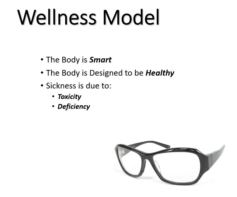 wellnessmodel.jpg