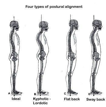 bodymechanics4.jpg