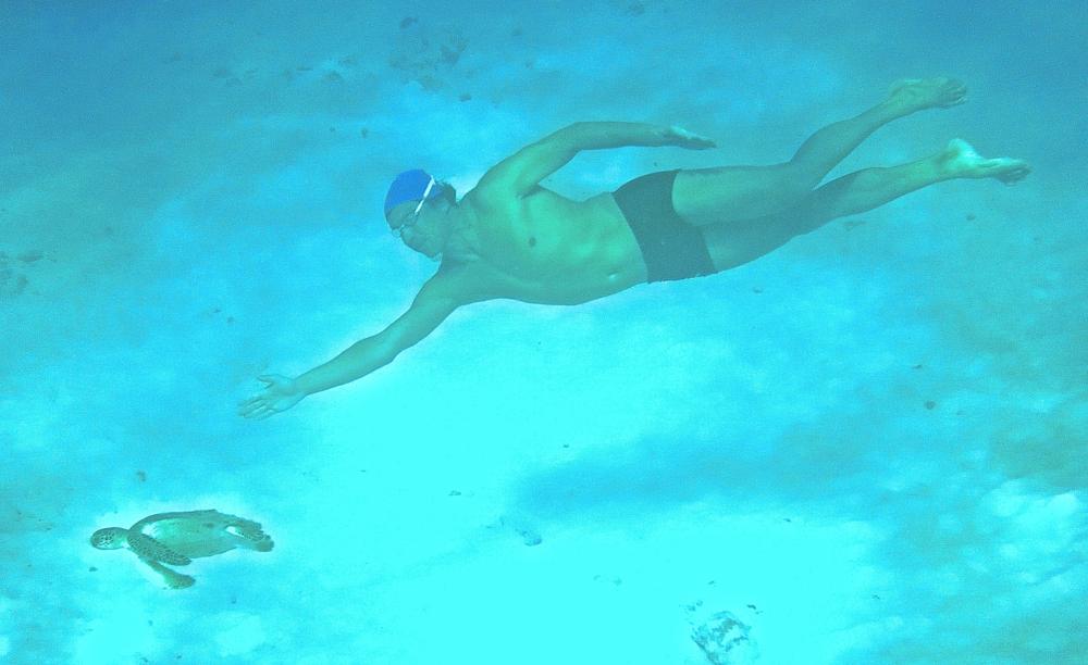 NYC private swim coach boris talan swimming open water with sea turtle