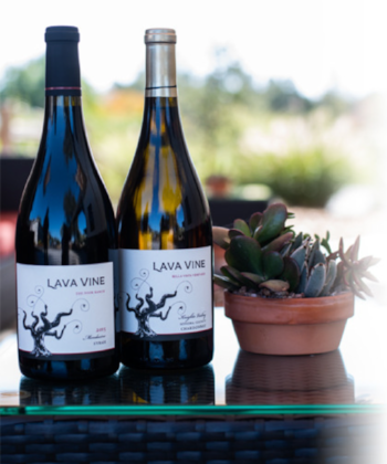 lava_wines.png
