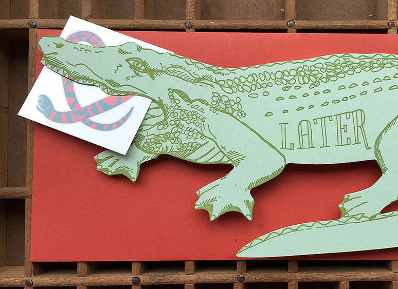 gator crop.jpg