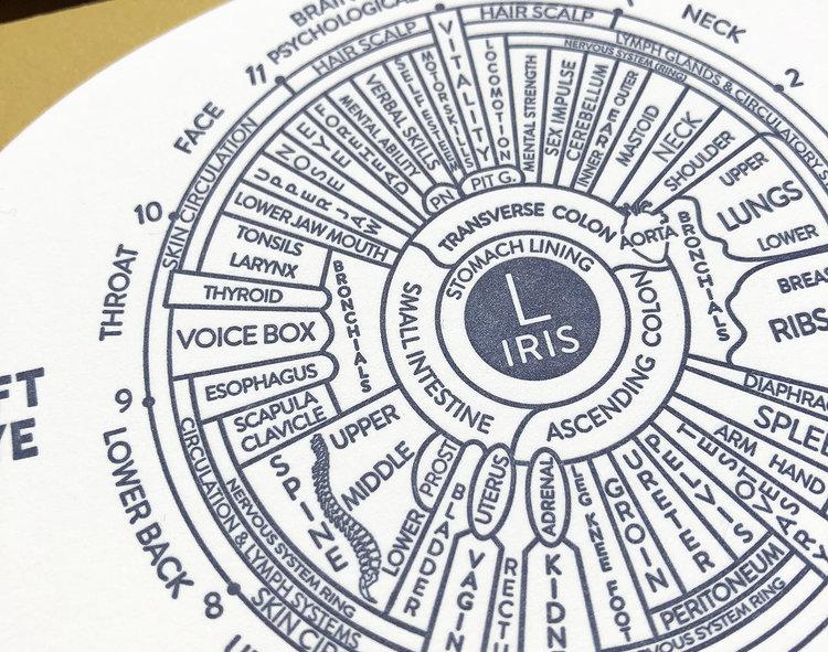 Iridology Chart Eye Card Blackbird Letterpress