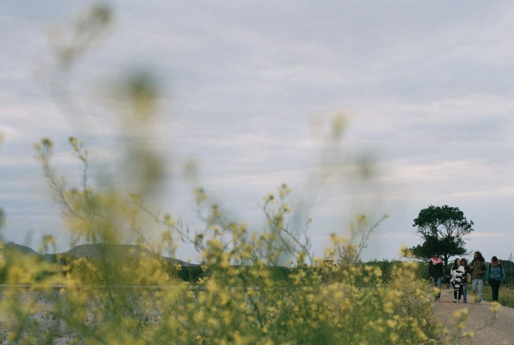 clase-fotografía-naturaleza.jpg